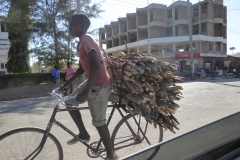 Bicycles carrying goods 1