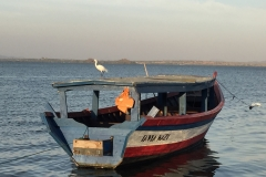 Lake Victoria 3